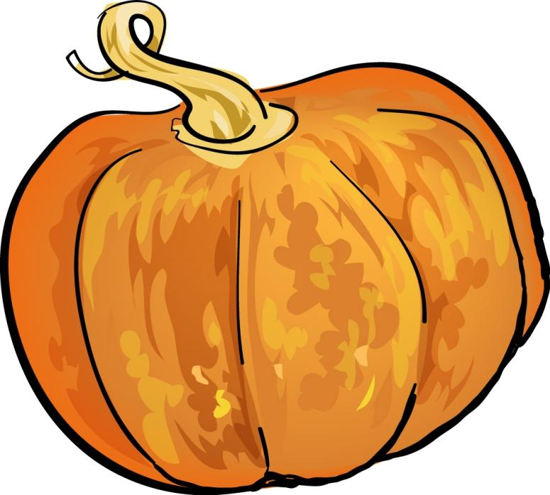 Pumkin Picture 12 Health Care Associates Community Care Givers A pumpkin is a fruit block that appears in patches of grassy biomes. pumkin picture 12 health care